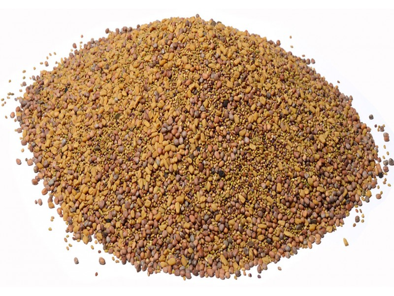 Sprouting Seed Mix, 8 oz.