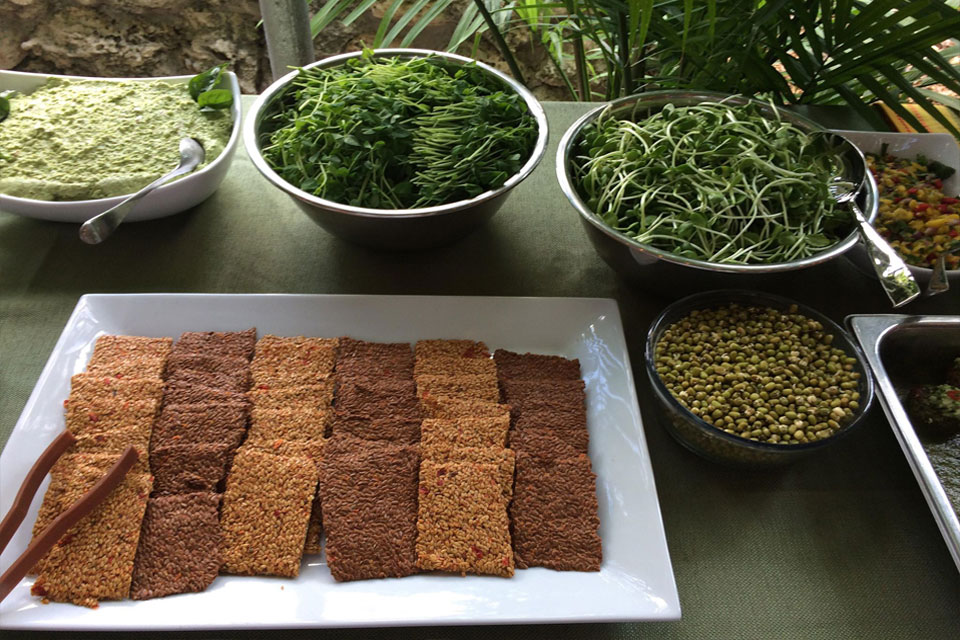 raw vegan organic flax crackers and sprouts